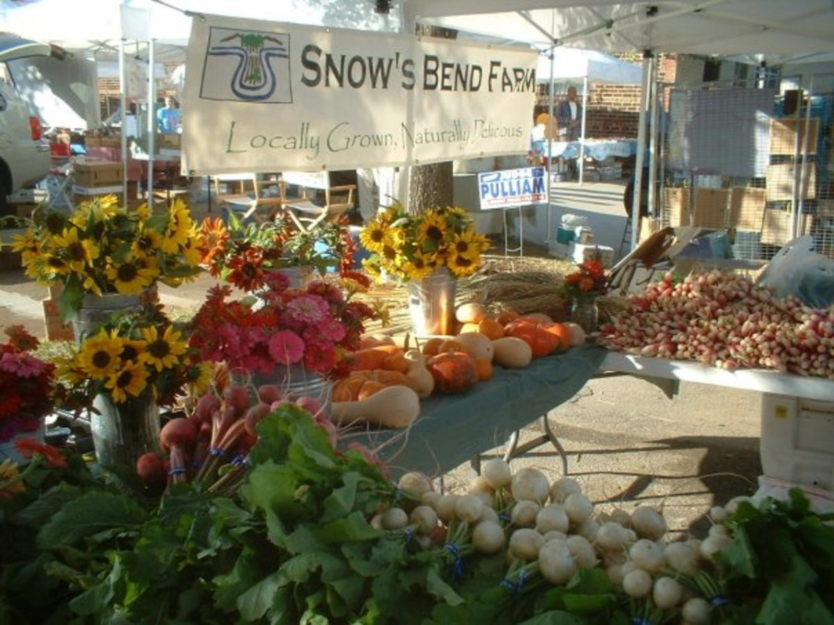 Snow's Bend Farm, one of the local farms where Kozy's buys its produce.