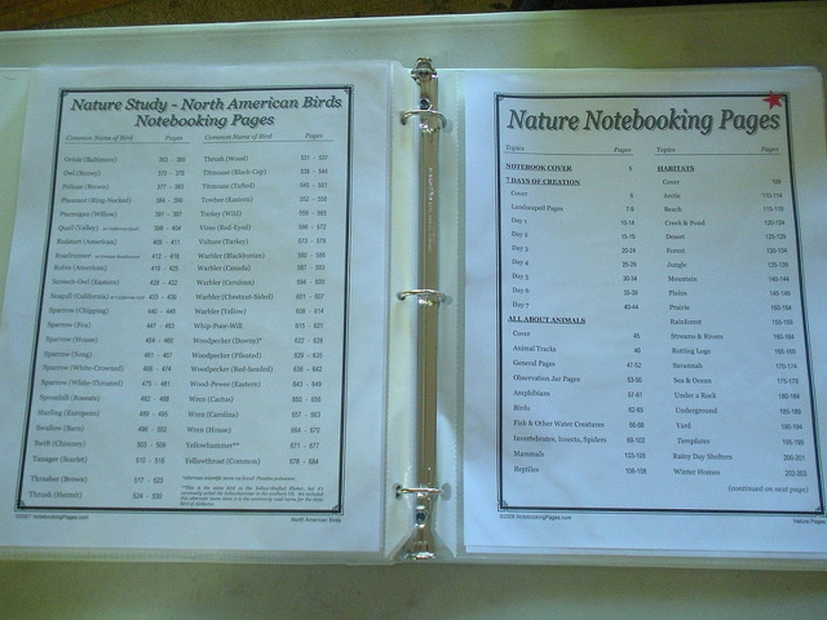 notebooking-for-high-schoolers
