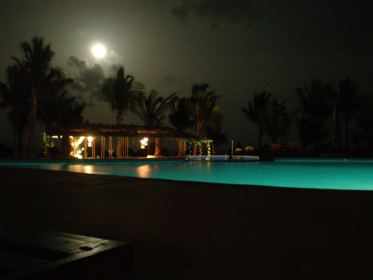 Ceiba del Mar Resort in Mexico:  trees of life and pool by moonlight.  Notice places and moments that nurture stillness and bring us to our roots in oneness.