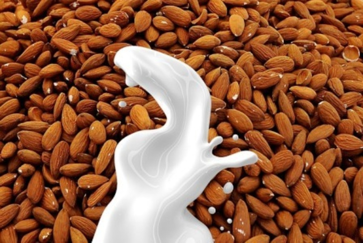 The creamy inner meat of the almond make a perfect rich milk or cream, depending on how much water you add.