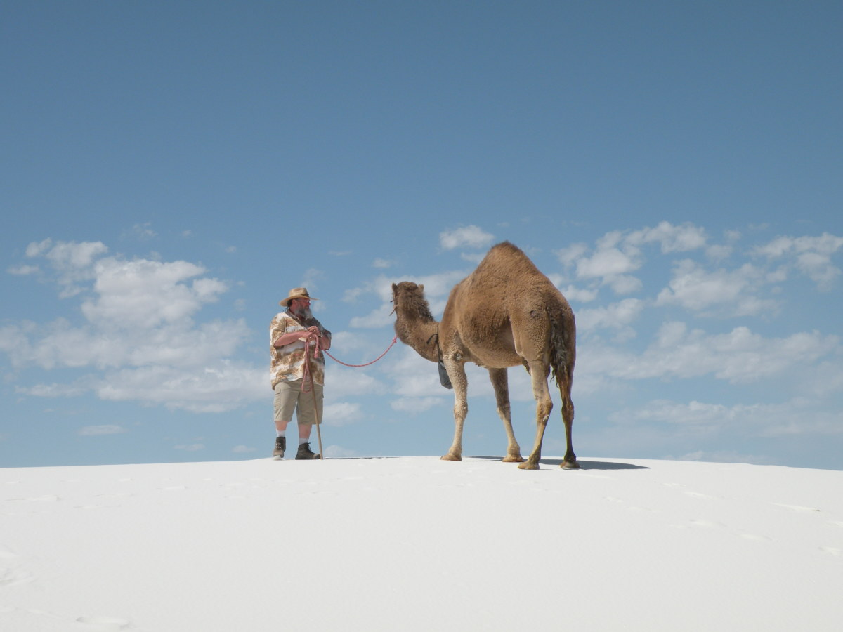 Matilda and George taking a walk at White Sands National Monument.