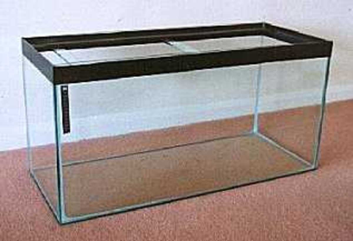 Standard Glass Aquarium