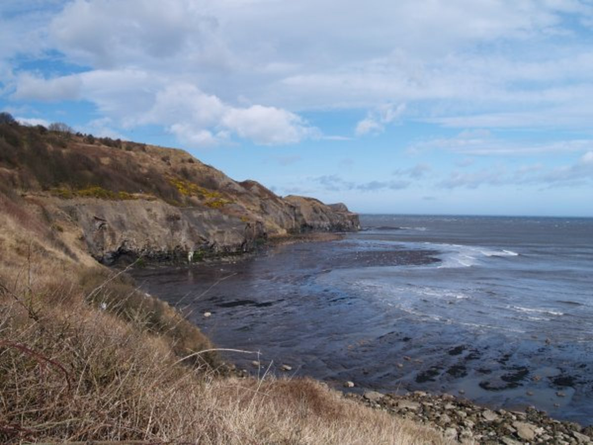 Sandsend and Kettleness lie to the north of Whitby, rocky outcrops and sites of alum workings from the 17th-19th Centuries