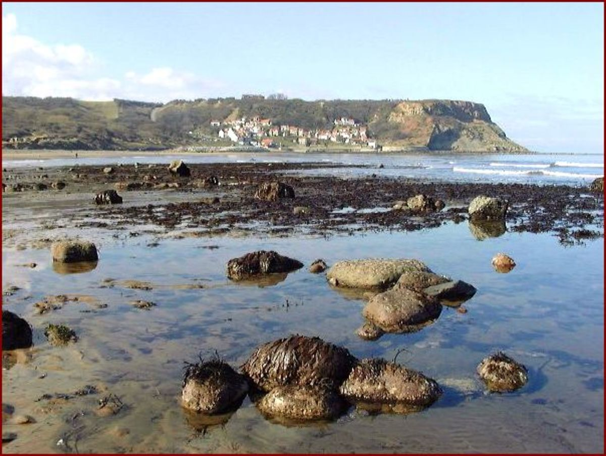 Runswick strand, the rocky foreshore - fishing vessels are launched at high tide and stored in a 'boat park' to the left of the landing in the view above