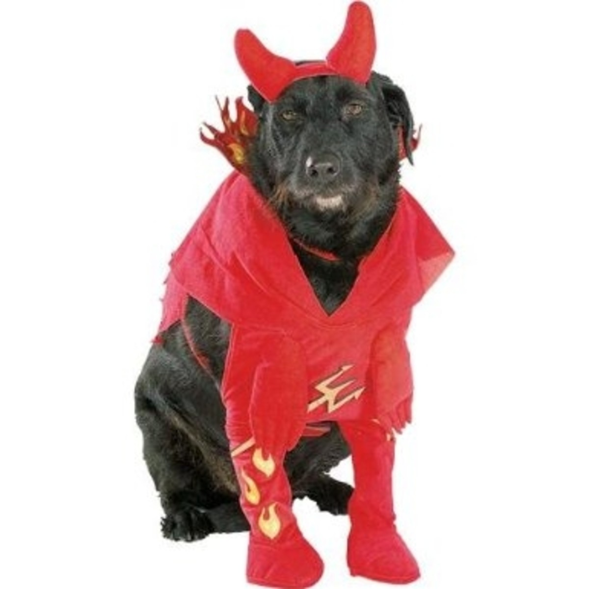 Rubie's 50107-XL Devil'd Dog Costume - Extra Large (XL)