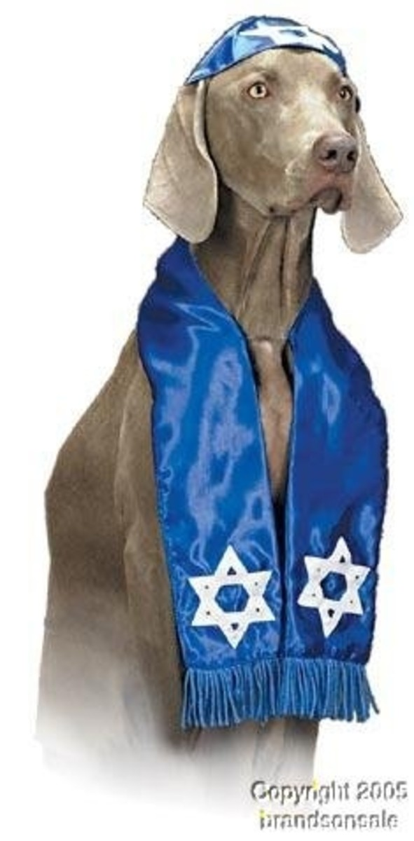 Pet Shalom Dog Halloween Costume For Large Dogs