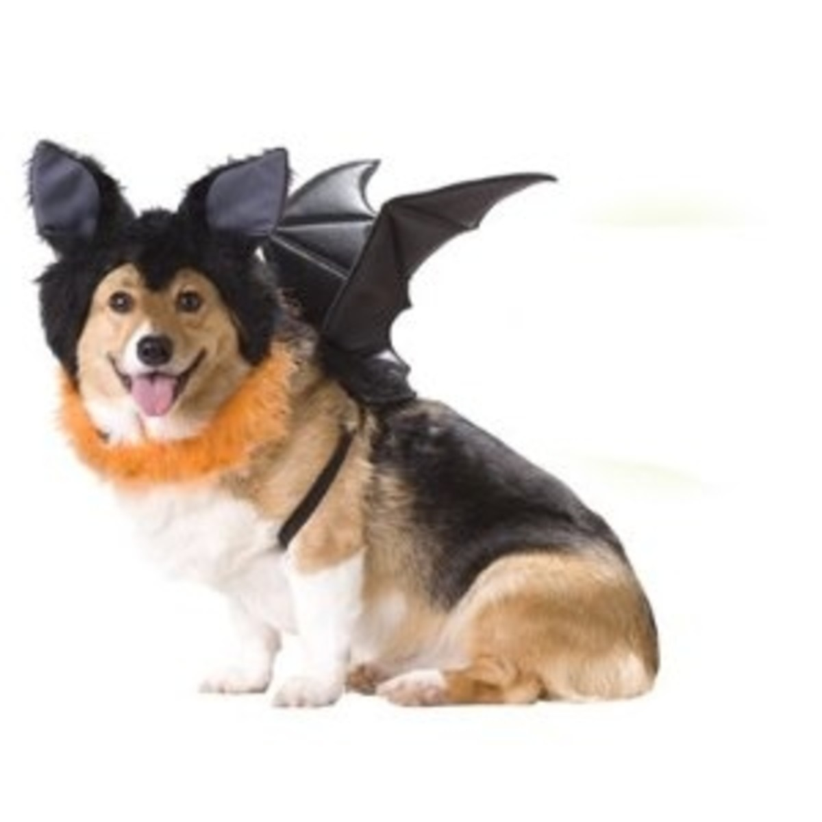 Animal Planet Spooky Bat Dog Halloween Costume with Wings & Furry Ears Headpiece Small