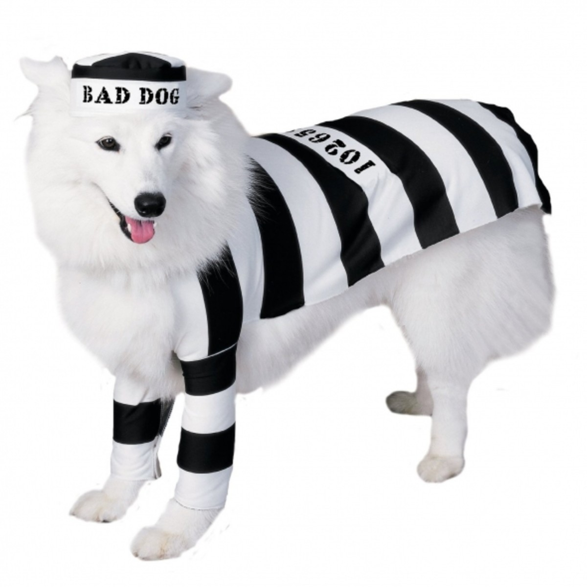 Prison Dog Pet Costume