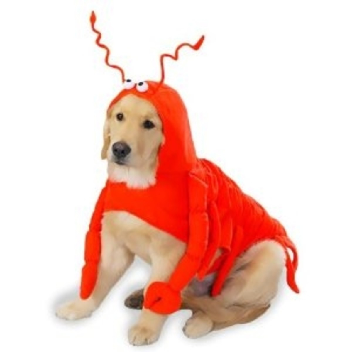 X-LARGE - LOBSTER PAWS - Dog Halloween Costume