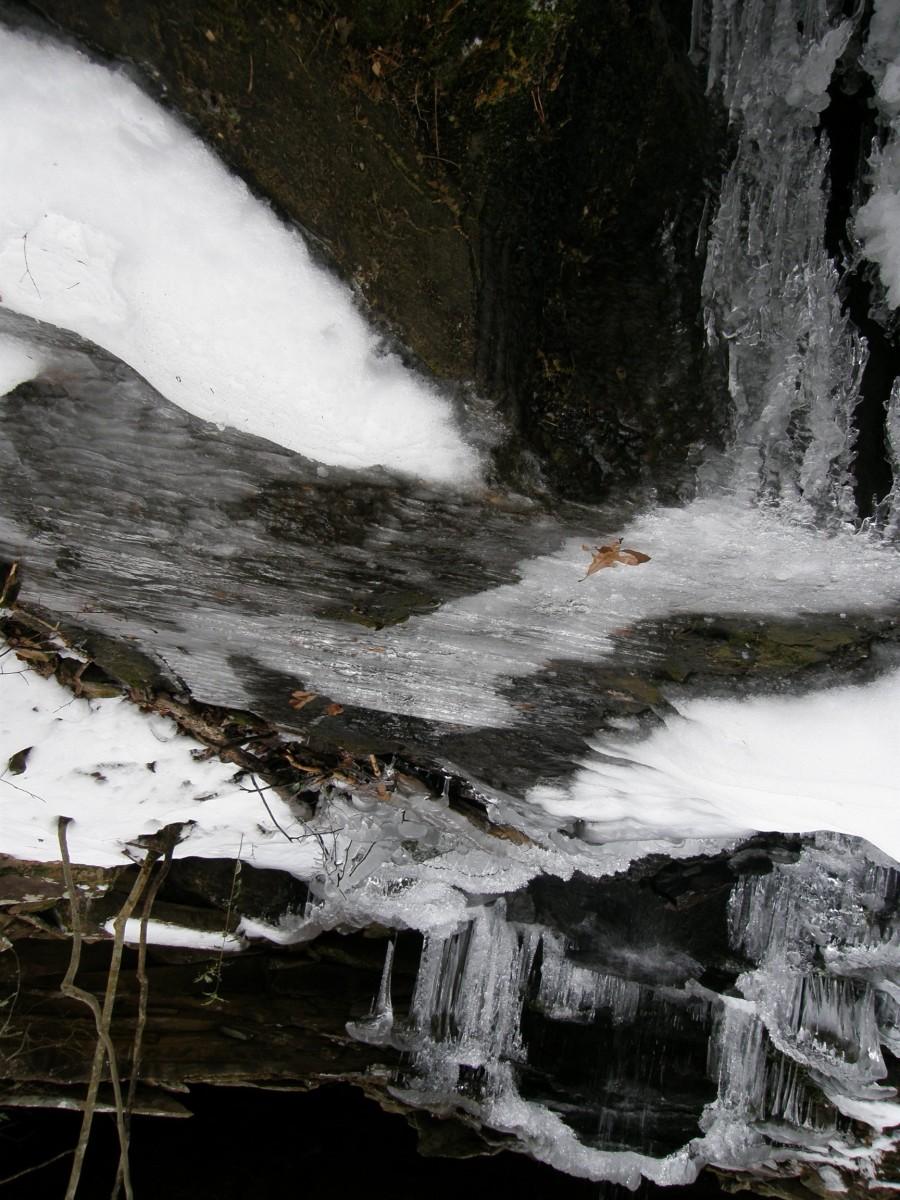 Freeze Frame (photograph by Vicki Parker)