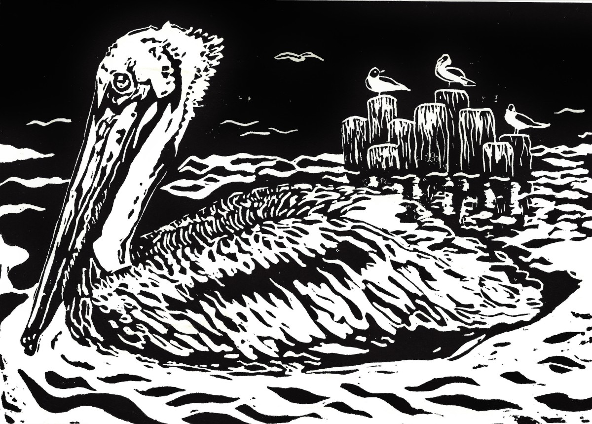"My original linocut of a pelican with seagulls in background.  Titled ""Seaside Serenity""  (copyrighted - do not use without permission)"