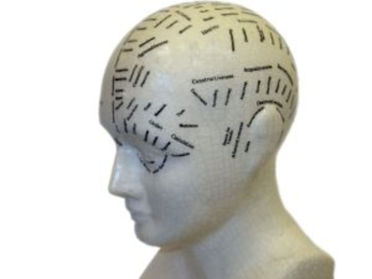 Phrenology became a popular party game - reading bumps on the head.