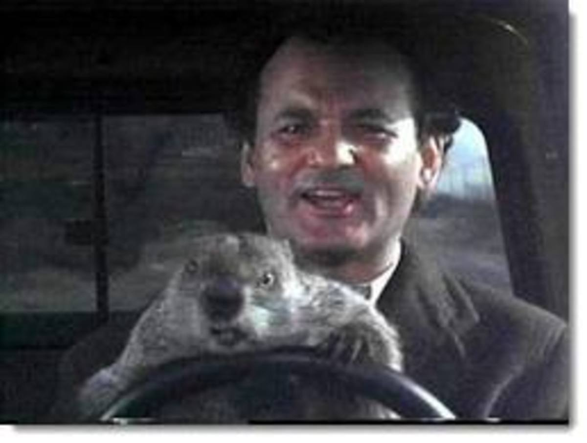 the groundhog by richard eberhart essay