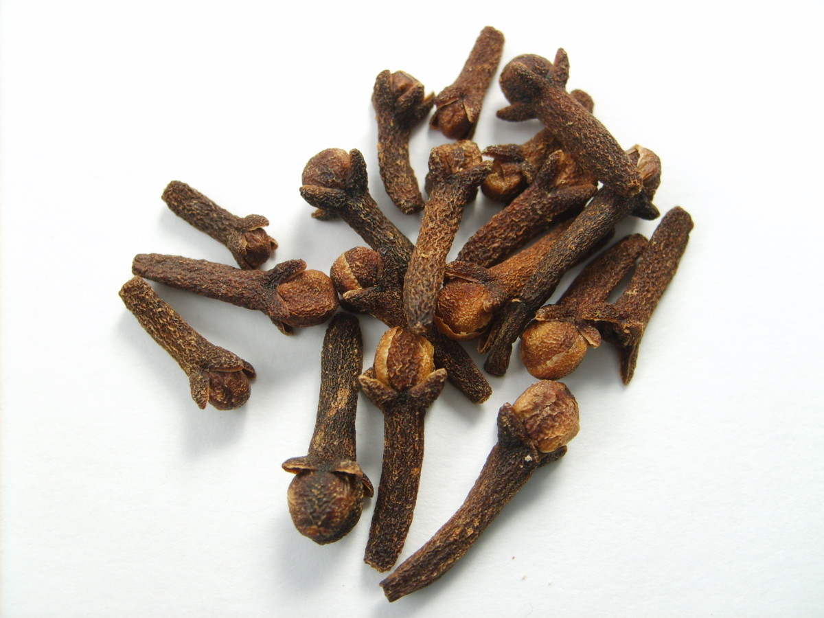 The Health Benefits Of Cloves And Clove Oil