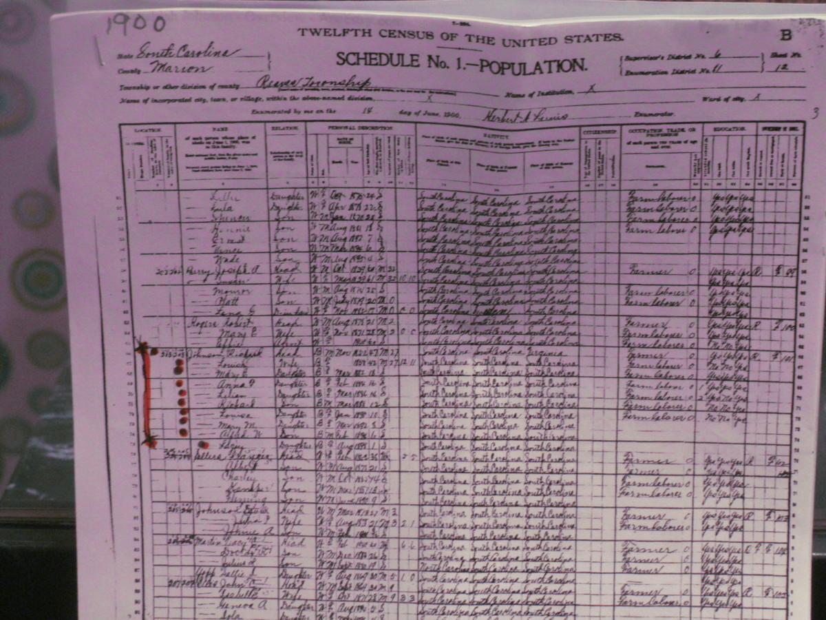 Documents from the 1900 Census that showed the origin of the Platt-Coleman family through Richard Johnson, who was born in the 1800's.