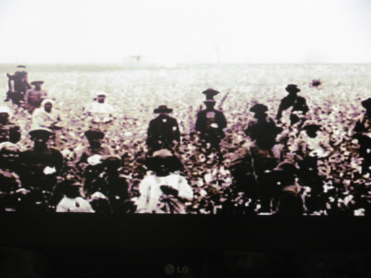 Image of families working in the fields together from the African American Lives 2 documentary.