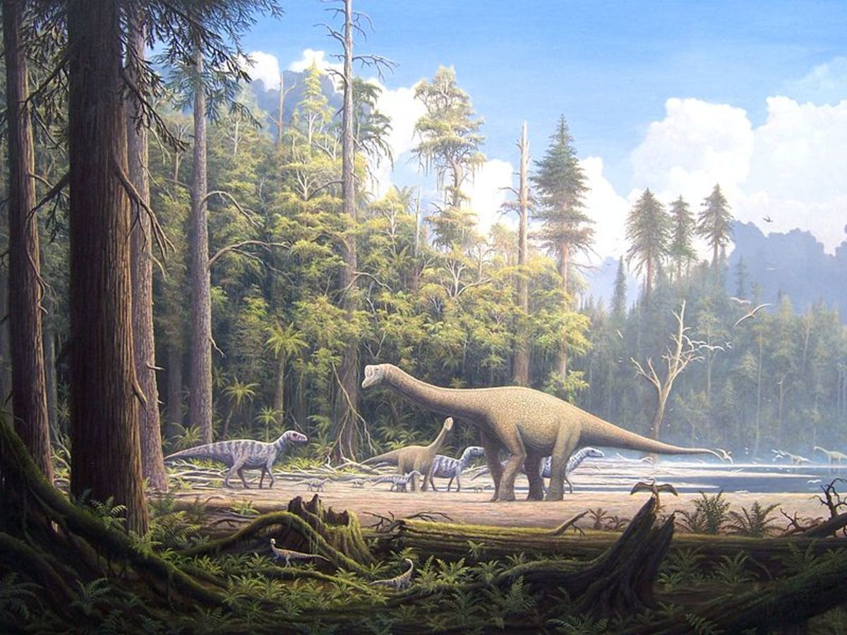 The Jurassic saw Earth transform into a warm and fertile world, full of giant conifers which greatly benefited the giant dinosaurs.