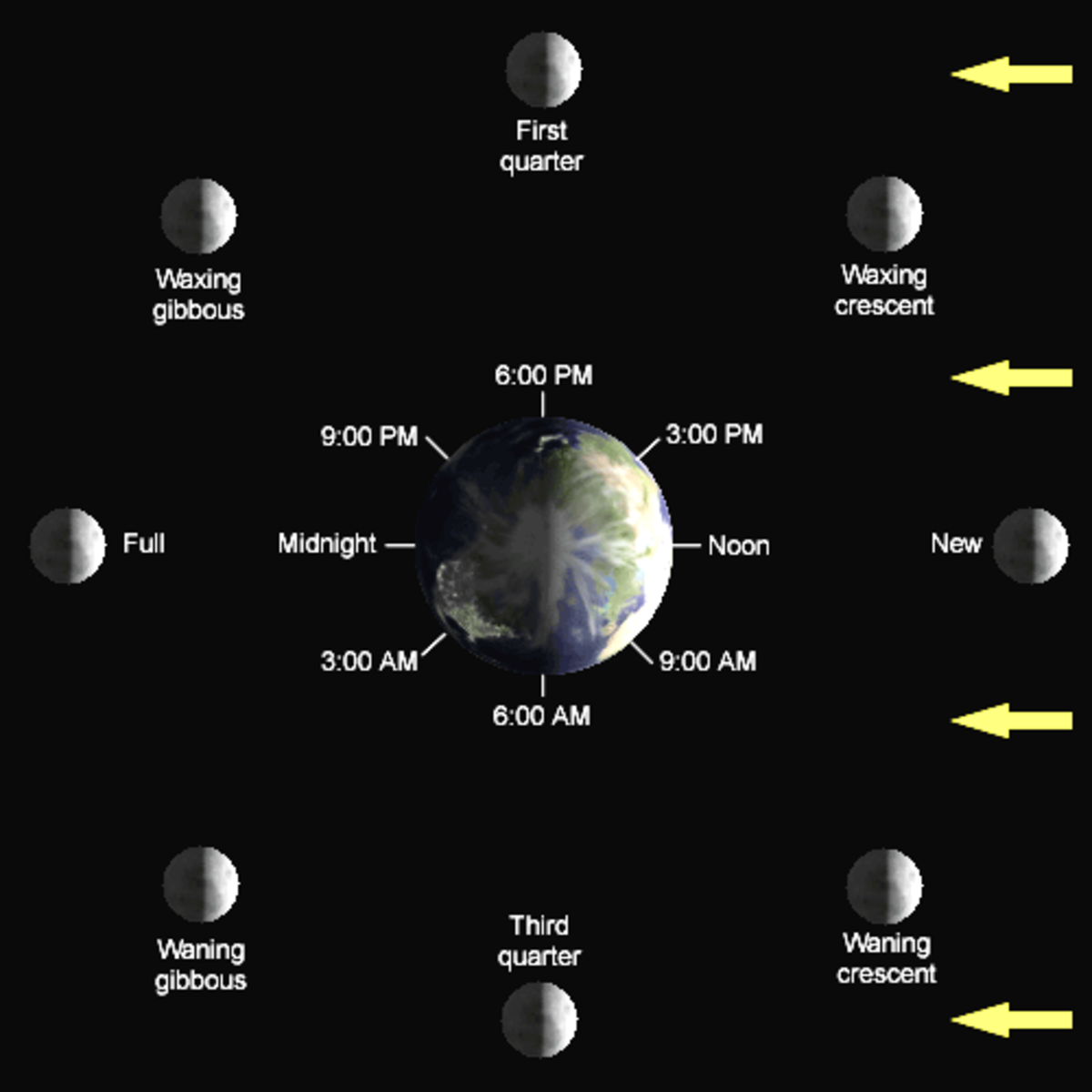 Diagram of lunar phases.