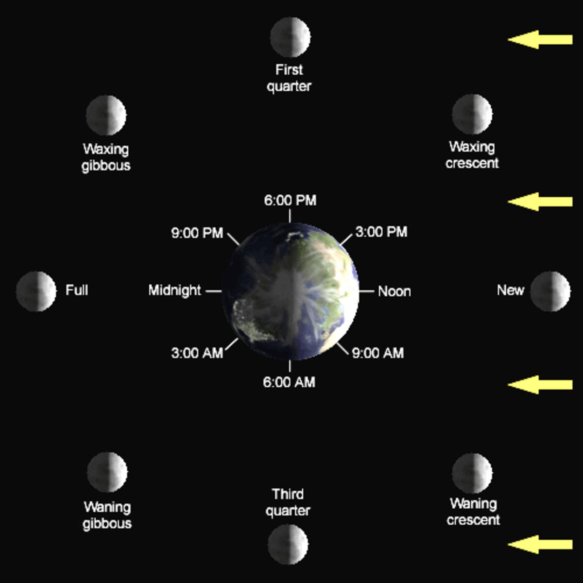Diagram of lunar phases.