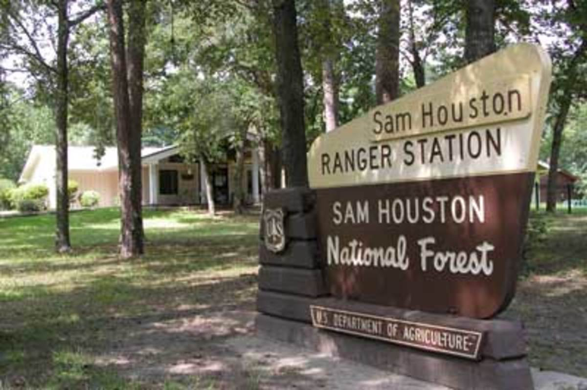 Sam Houston National Forest sign, Texas