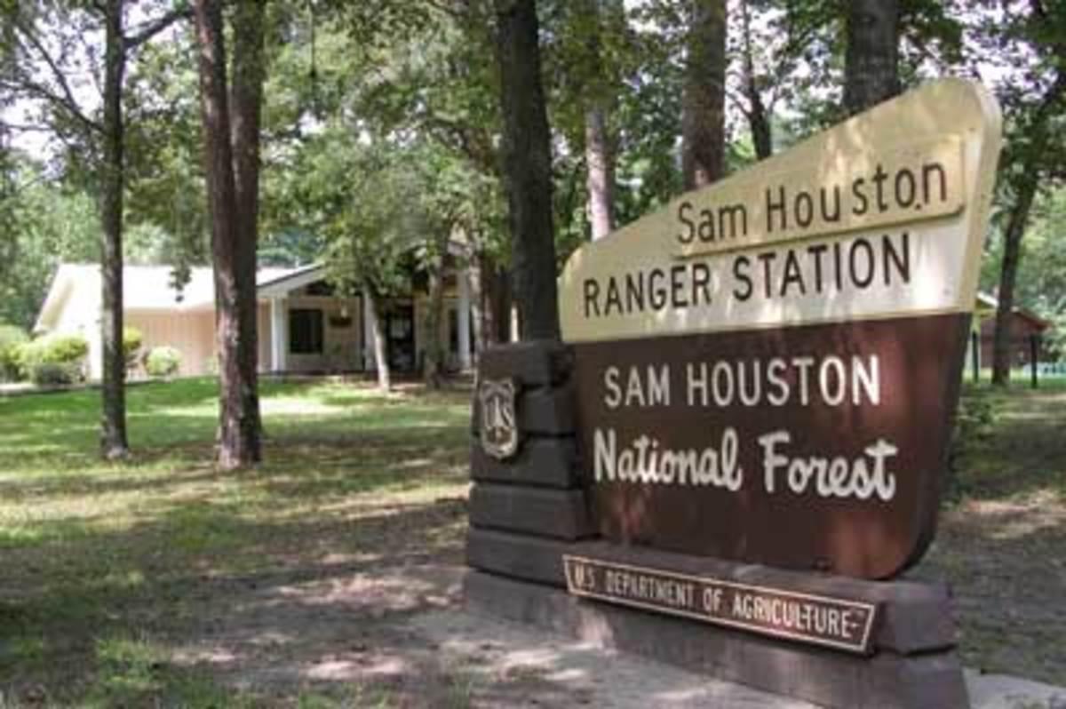 Sam Houston National Forest sign, Texas