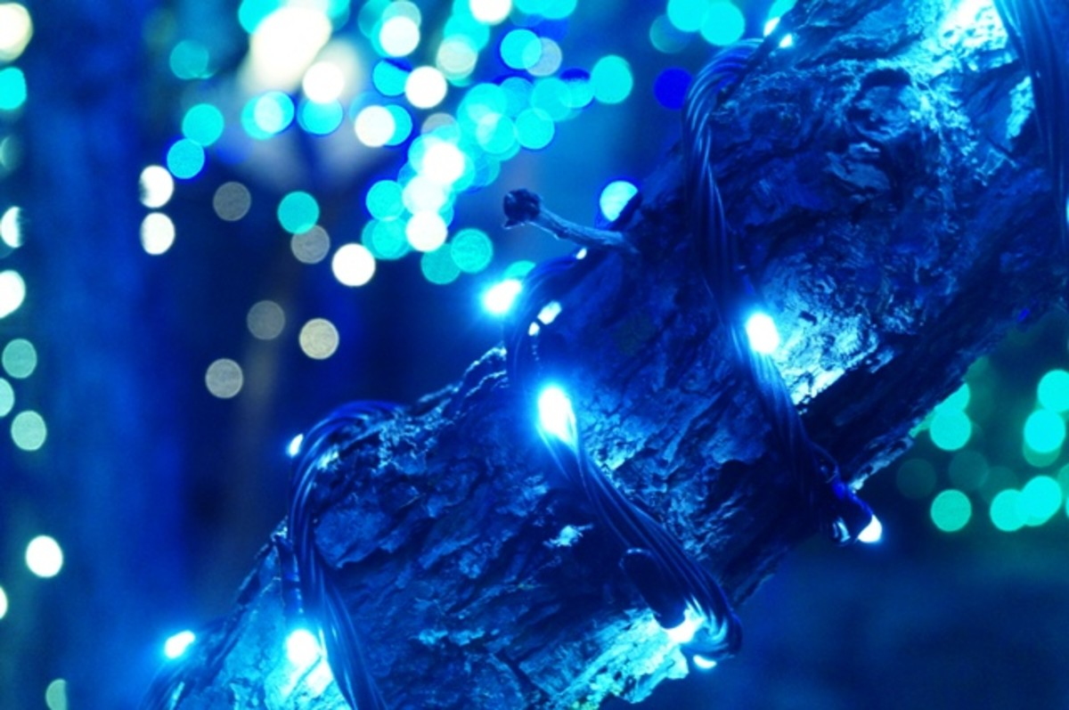 """Blue Lights"" - Day 2 of the Christmas Photo Project"