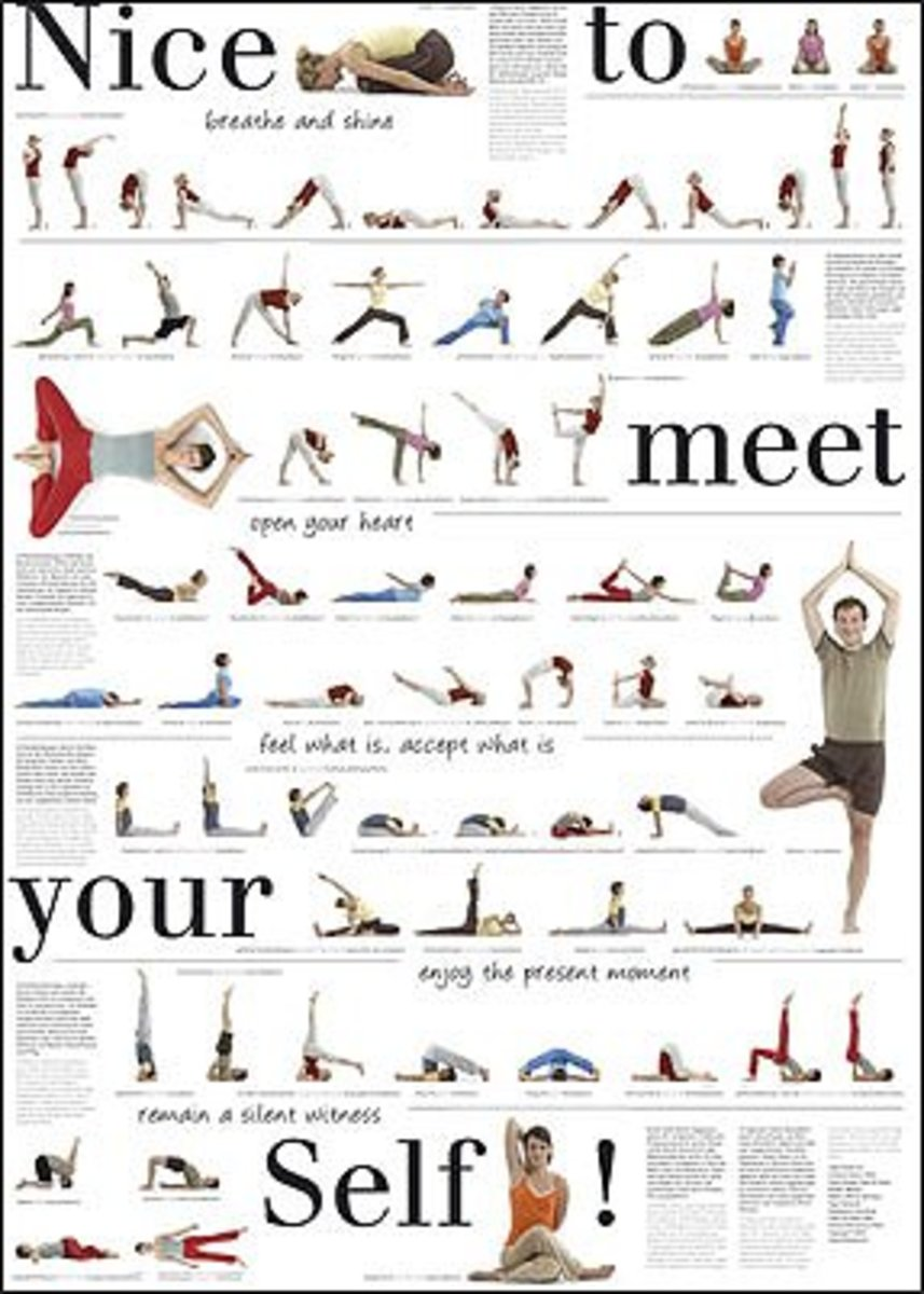 Pilates Nice to Meet You Exercise Chart with Dozens of Exercises