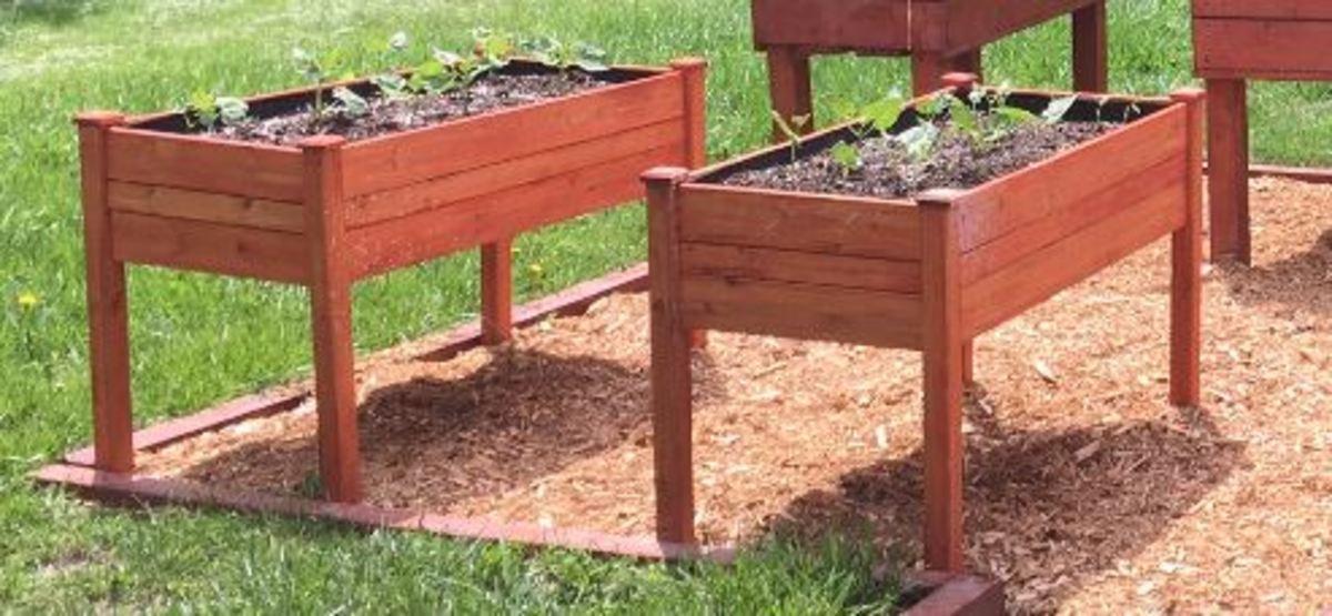 My Garden Beds