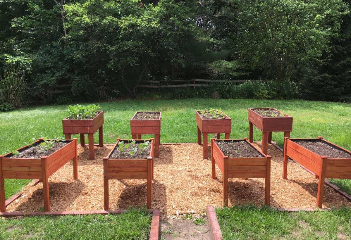 Backyard Garden Bed Area