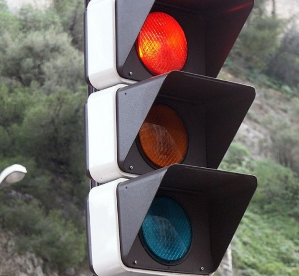 Stoplights on the Road to Second Marriages