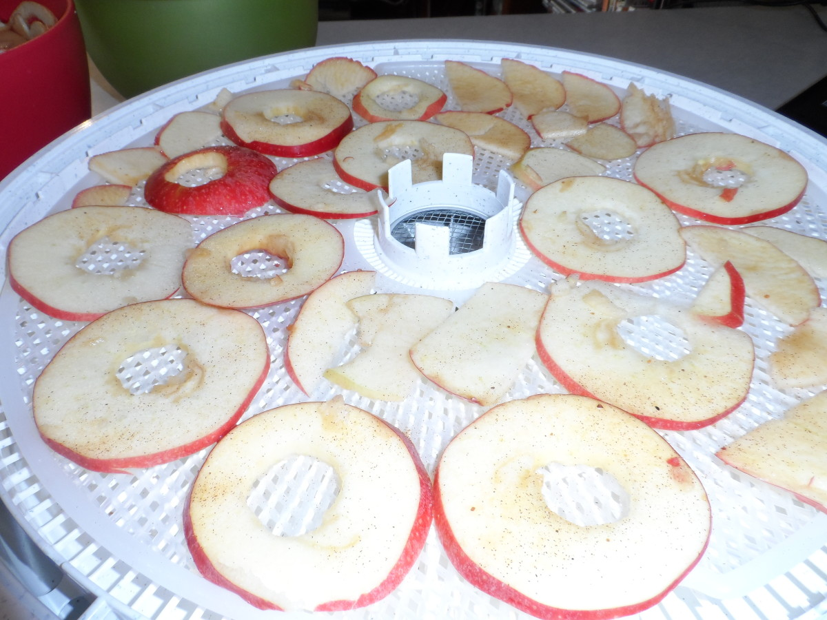 Seasoned apple chips layered on dehydrator trays.