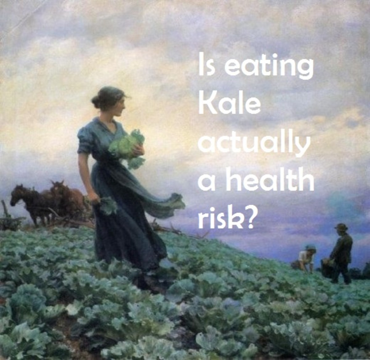 Kale is a part of the cabbage family and has been around for thousands of years. But can you have too much of it?