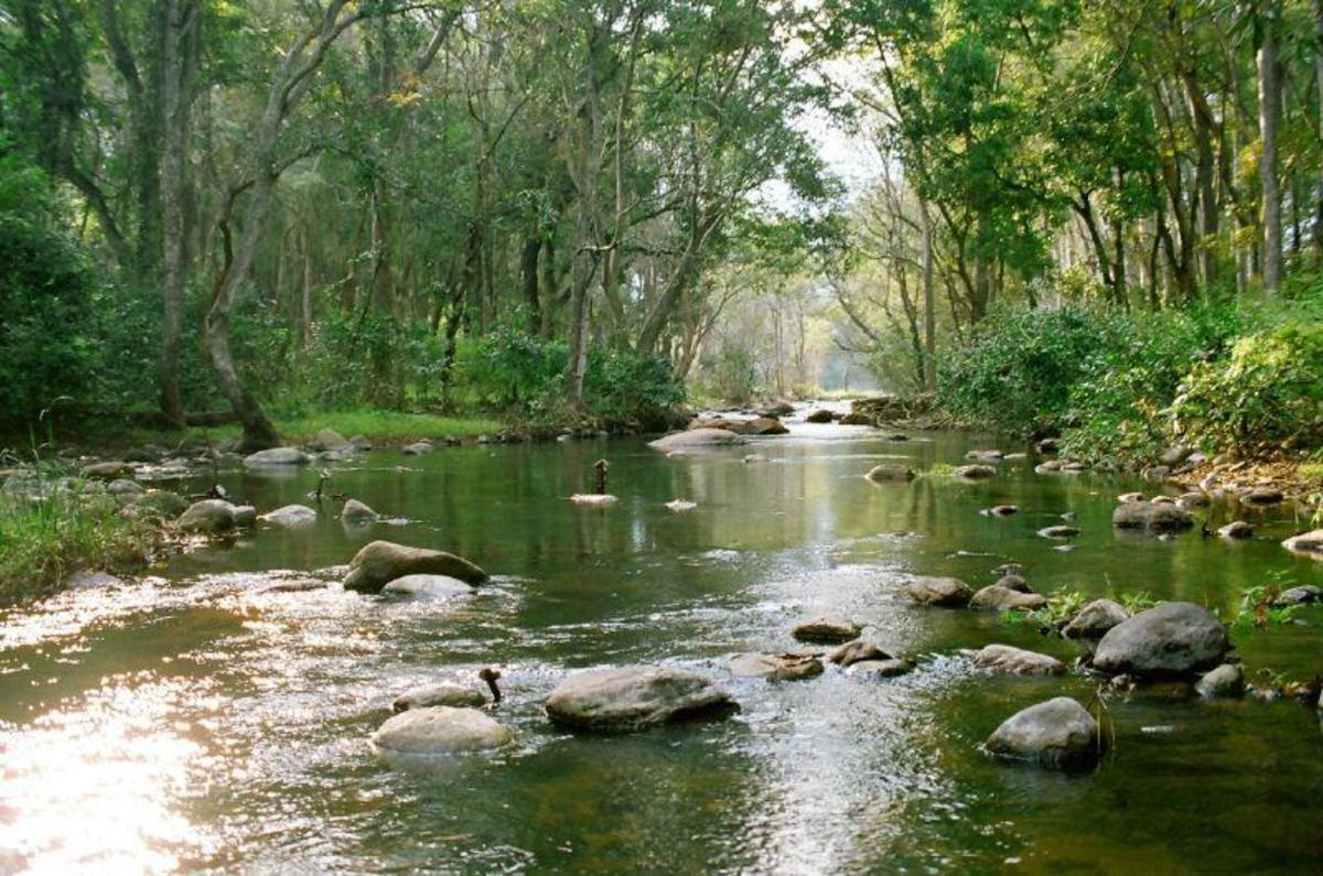 Top 6 Must See High Range Places In Kerala Best Travel