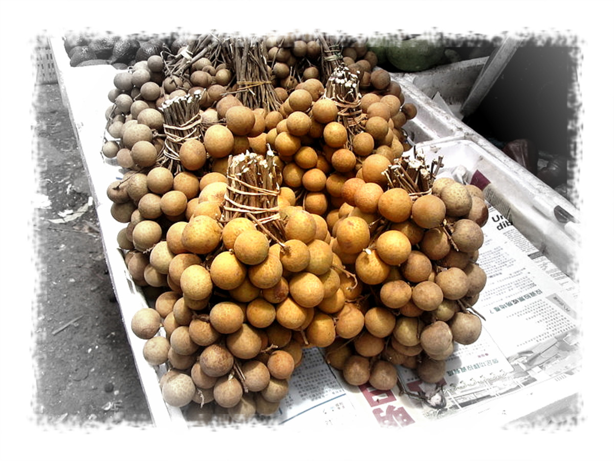 Getting to know the longan and its benefits