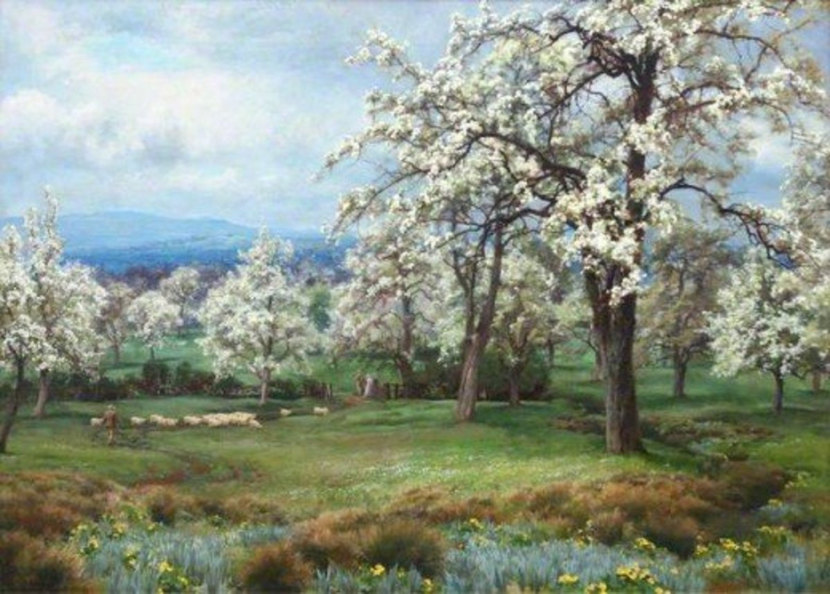 The Pear Orchard