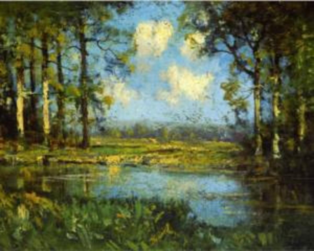 The Woodland Pool