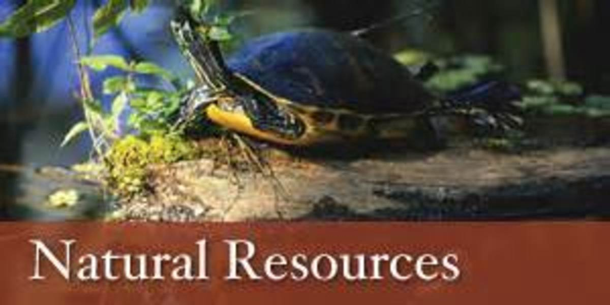 To protect  our natural resources from being squandered