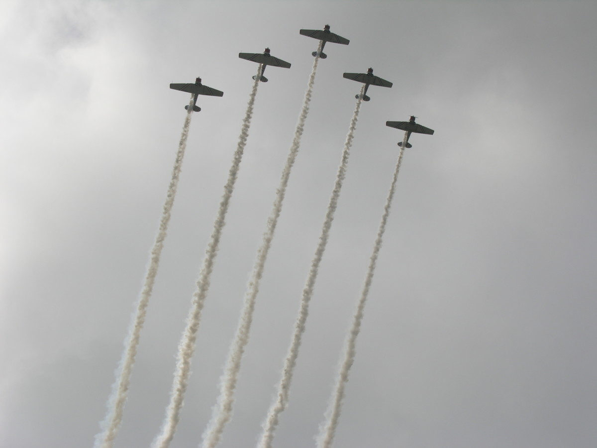 A civilian flying team performs at the Andrews AFB open house, 2009.