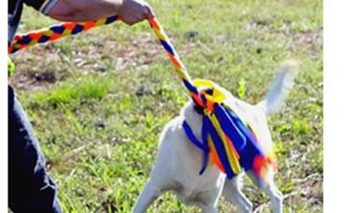 Genuine Dog Gear Super King Tug