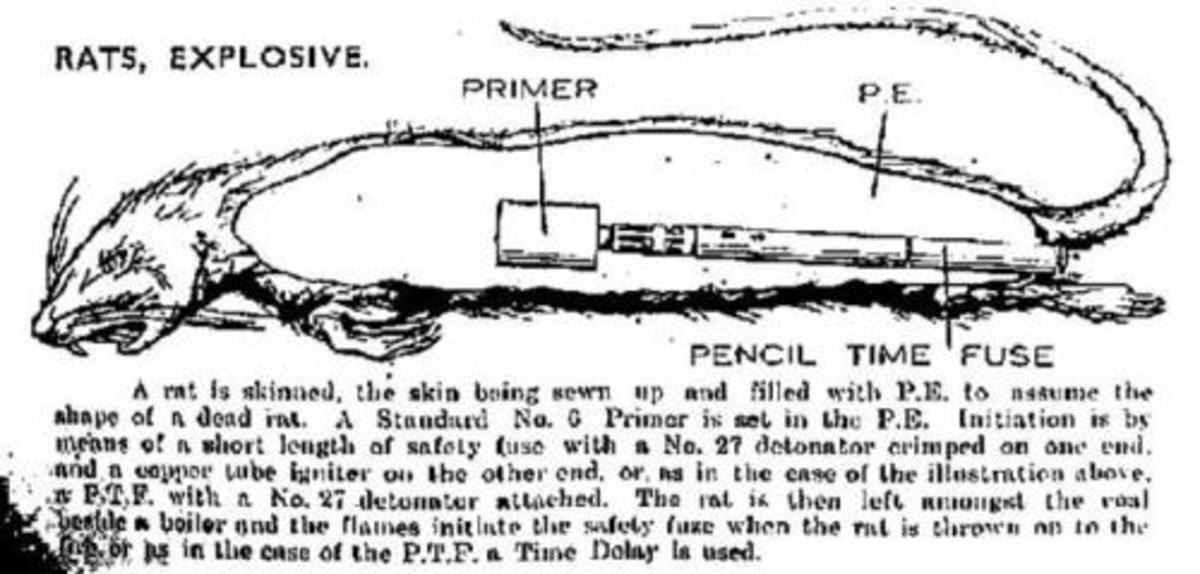 An exploding rat designed to destroy furnaces and factory boilers.
