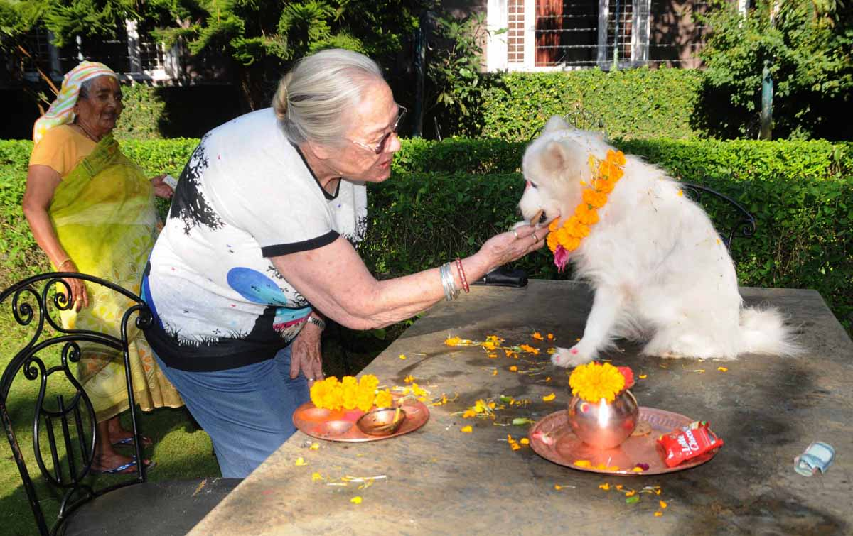 Dog Worship in Nepal
