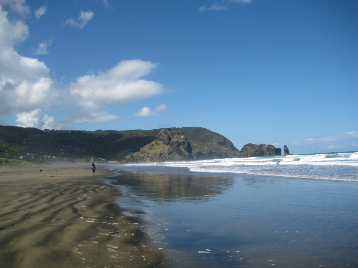 Surfer walking down the North Piha Beach