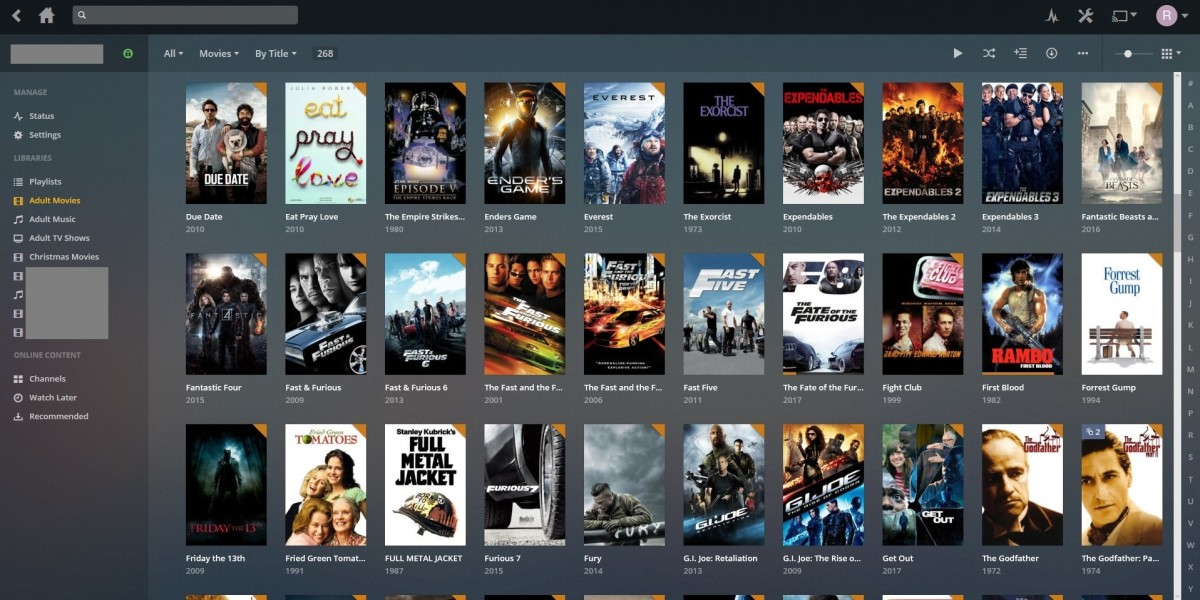 After the metadata for the file is updated, the new poster associated with your movie will appear.