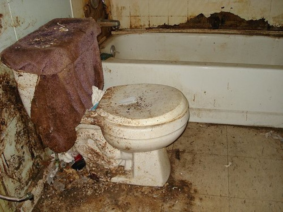 Rating The Filthiest Bathrooms That I Have Ever Visited