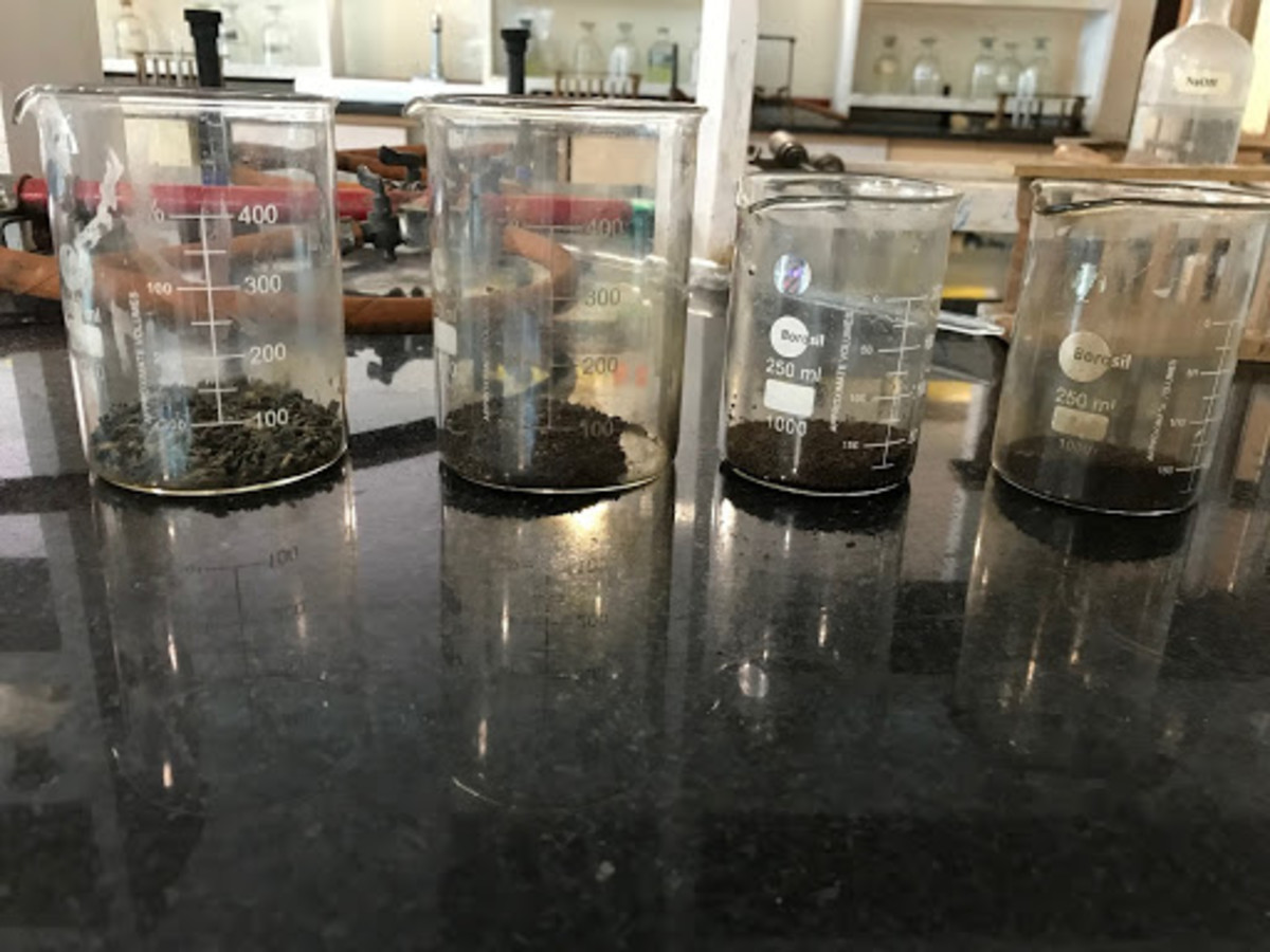 Determination of Caffeine in Tea: A K11-12 Project