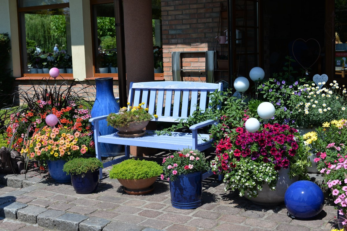 For patio container gardening apply seaweed fertilizer weekly through the growing season.