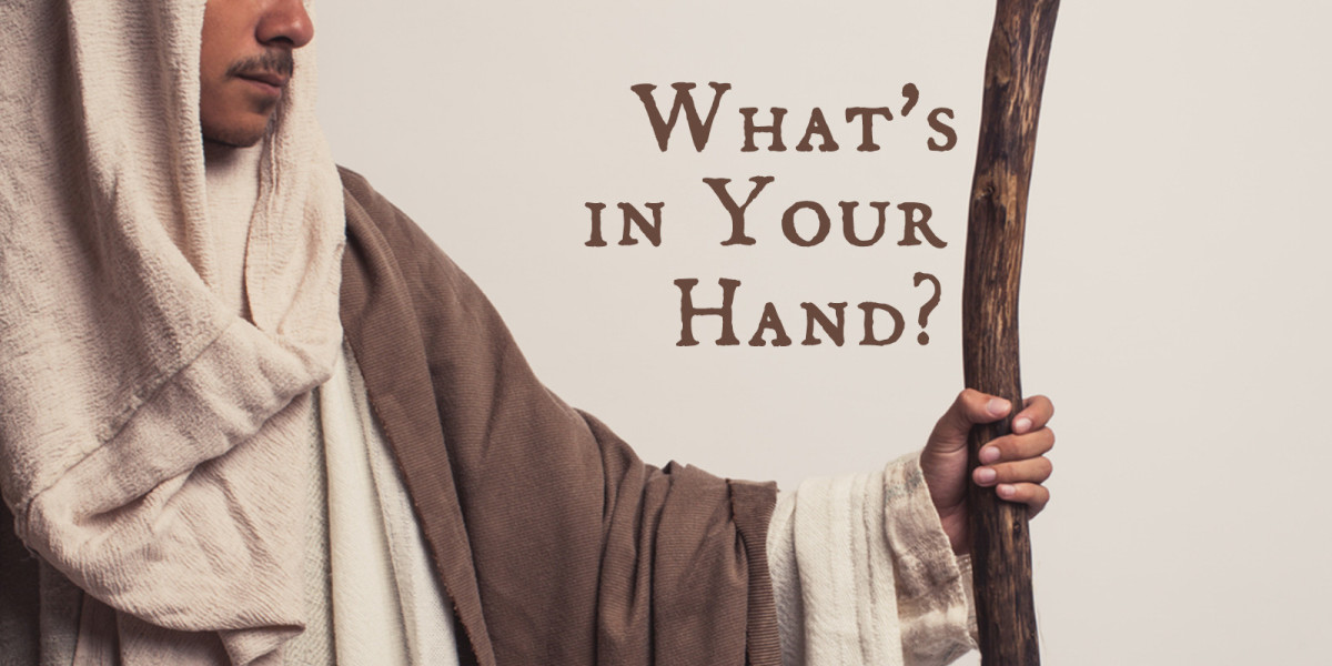 "God asked Moses, ""What's in your hand?"" to prove that he did have something he could use."