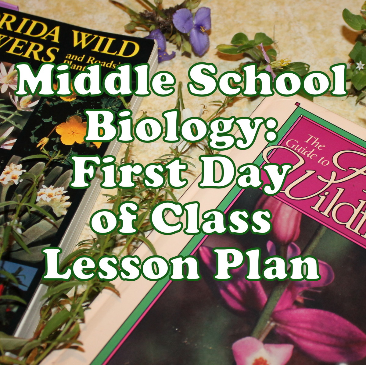 Middle School Biology First Day Lesson Plan