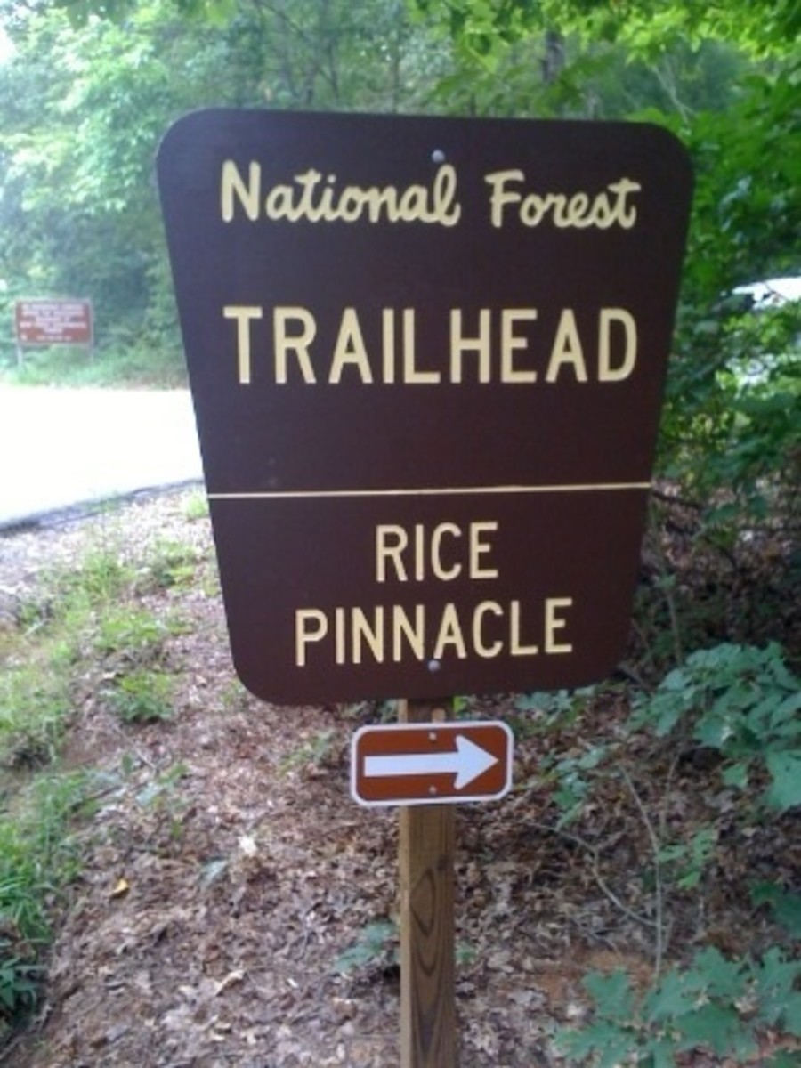 Rice Pinnacle Parking Lot In Bent Creek Forest