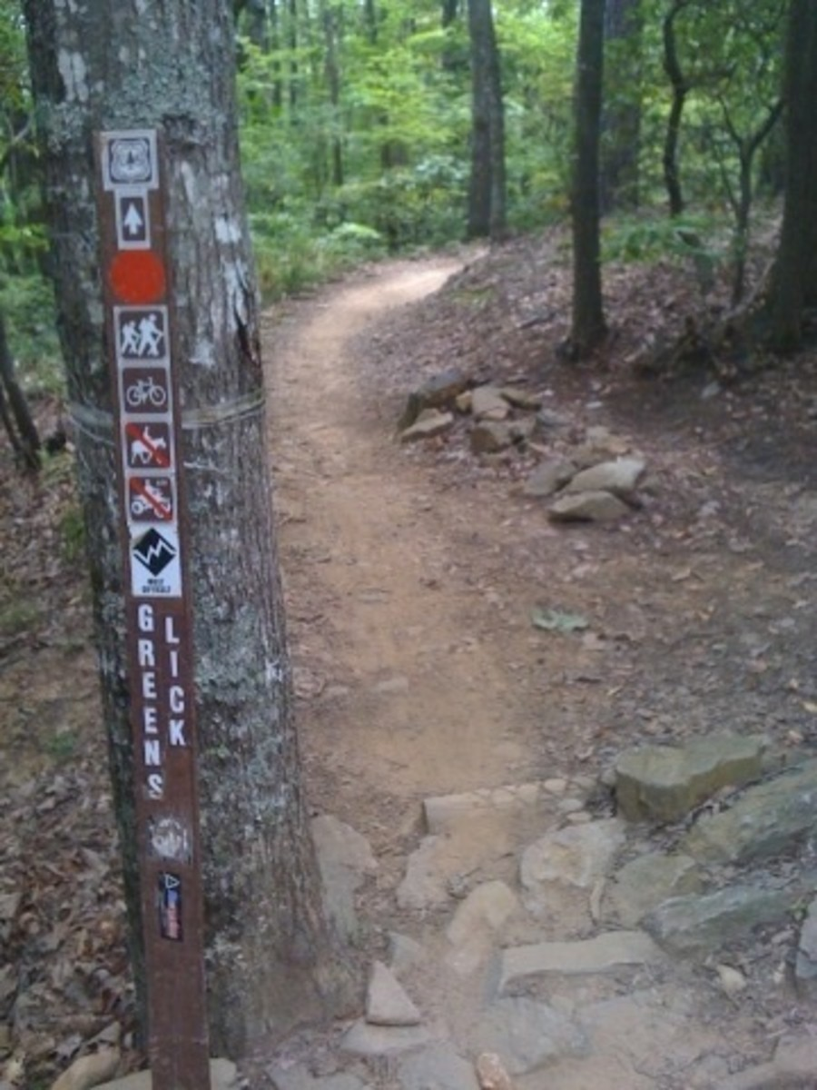 Its a long climb but well worth the effort to get to Greens Lick  Trail in Bent Creek.